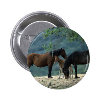 Wild Mustang Mare & Foal 6 Cm Round Badge