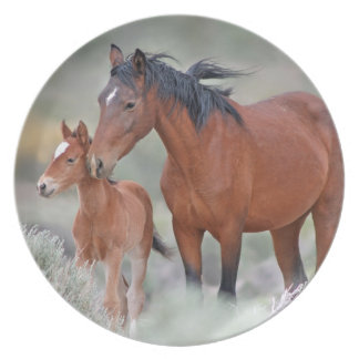 Wild Mustang Mare with her Colt Party Plate