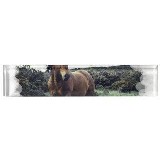 Wild Mustang Nameplates