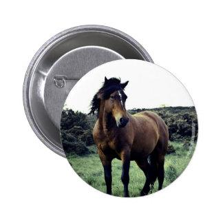 Wild Mustang Pin