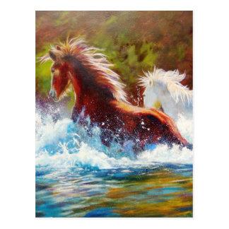 Wild Mustang Splash Postcard