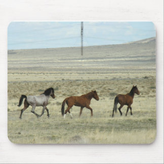Wild Mustang Studs Mouse Pad
