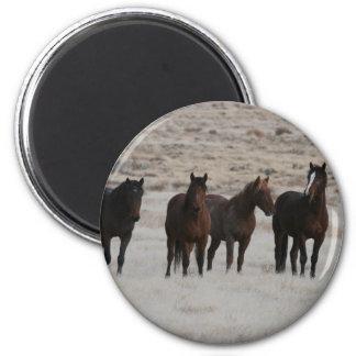 Wild Mustangs 6 Cm Round Magnet