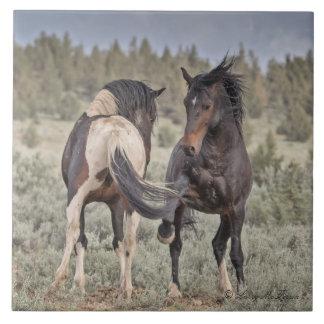 Wild Mustangs Ceramic Tile