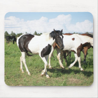 Wild Mustangs Mouse Pad