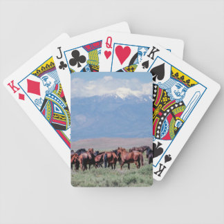 Wild Mustangs out West Poker Deck