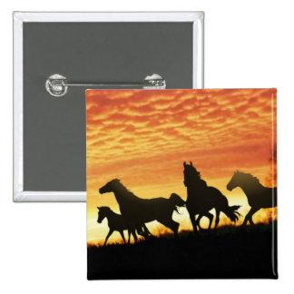 Wild Mustangs Pinback Buttons