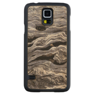 Wild Olive Tree | Great Karoo, South Africa Carved Maple Galaxy S5 Case