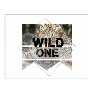 wild one.jpg postcard