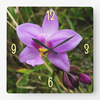 Wild Orchid Purple Tropical Flower Square Wall Clock