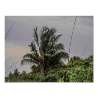 Wild Palm Tree Blowing in the Wind Poster