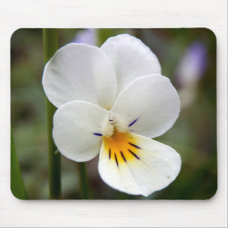 Wild Pansy Mouse Mat