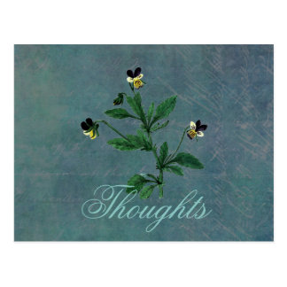 Wild Pansy Thoughts Postcard
