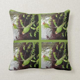 Wild Parrots of Telegraph Hill American MoJo Pillo Throw Cushions