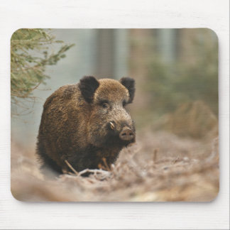 Wild pig!!! Wildly Boar!!! Mouse Pad