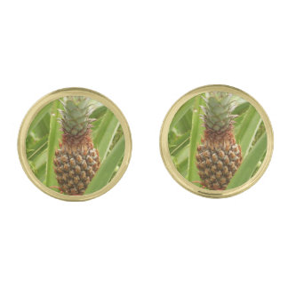 Wild Pineapple Tropical Fruit in Nature Gold Finish Cufflinks