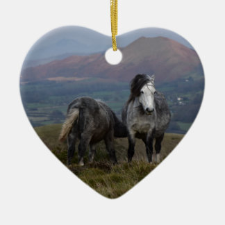 Wild Ponies Ceramic Ornament