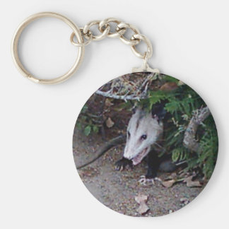 Wild Possum Key Ring