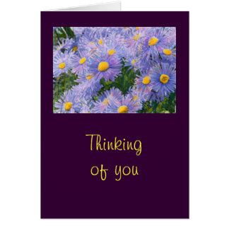 """Wild Purple Asters """"Thinking of You"""" Greeting Card"""