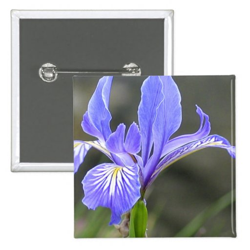 Wild Purple Iris Pins