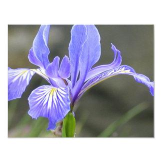 Wild Purple Iris Custom Invitation