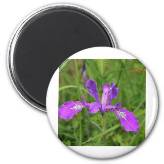 Wild Purple Iris Refrigerator Magnet