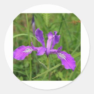 Wild Purple Iris Round Sticker