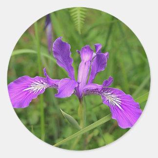 Wild Purple Iris Classic Round Sticker