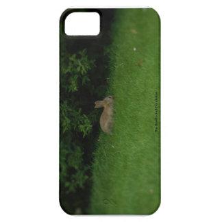 Wild Rabbit - Phone Case