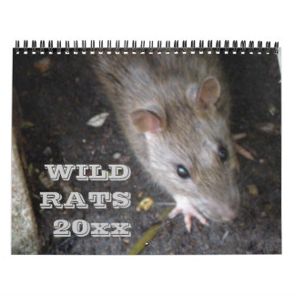 Wild Rats Personalized Calendar