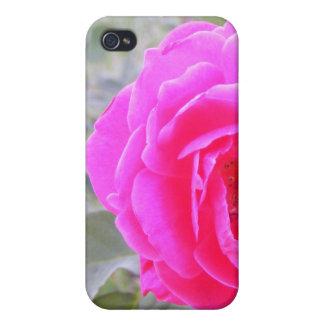 Wild Rose iPhone Case Cases For iPhone 4