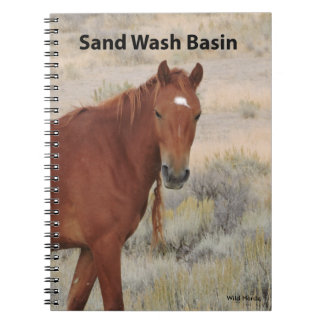 Wild Rose of Sand Wash Basin Journal Notebook