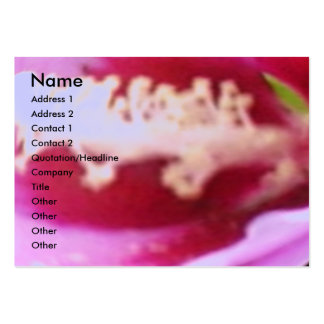 Wild Rose Petal Pack Of Chubby Business Cards