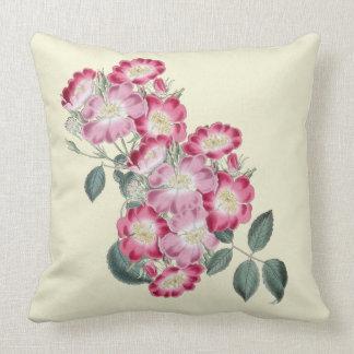 Wild Roses Botanical Indoor Pillow 20x20