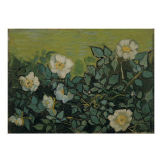 Wild Roses by Vincent van Gogh, Vintage Garden Art Poster