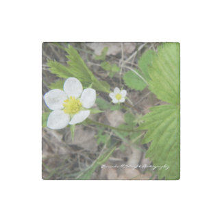 Wild Strawberry Magnet