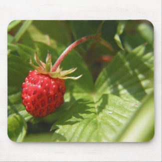 Wild Strawberry Mouse Pad