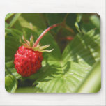 Wild Strawberry Mouse Pads