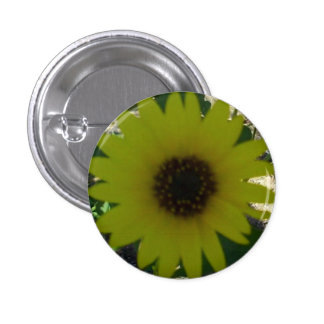 Wild Sunflower Buttons