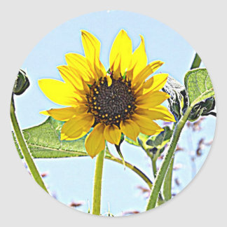 Wild Sunflowers Round Stickers