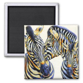 Wild Things - Vibrant Zebras Magnet