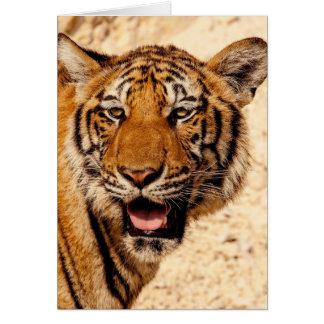 Wild tiger card