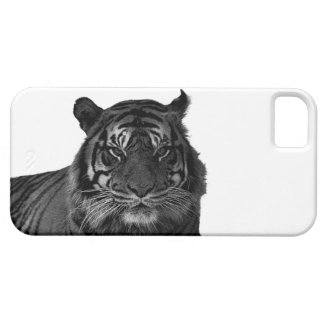Wild Tiger Endangered Species Big Cats Barely There iPhone 5 Case