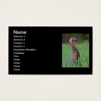Wild Tom Business Card