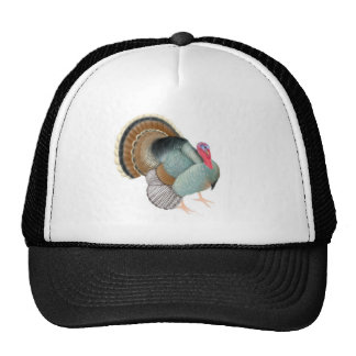 Wild Tom Turkey Trucker Hat
