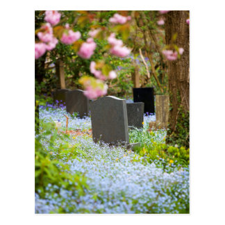 Wild tranquillity, beautiful churchyard. Hopwas UK Postcard