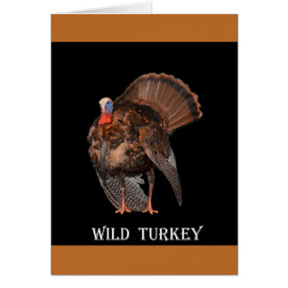 Wild Turkey (Alabama, Massachusetts, Oklahoma) Card