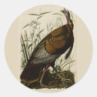 Wild Turkey by John Audubon Round Sticker