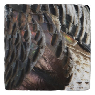 Wild Turkey Feathers I Abstract Nature Design Trivet