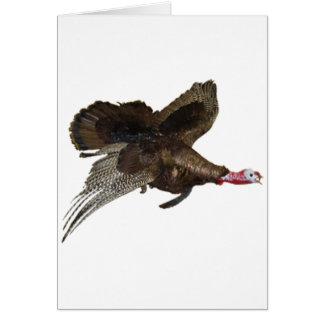 Wild Turkey Hunting Greeting Cards